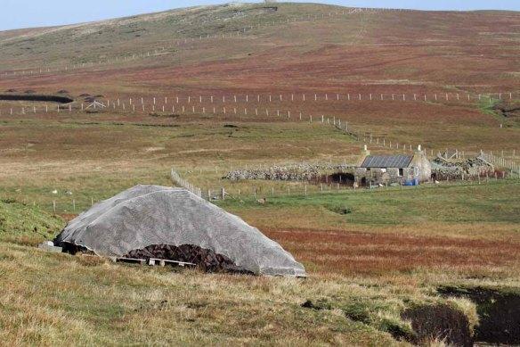 Peat cuttings (11)